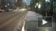 В Петербурге напавший с ломом на инвалида с собакой ...