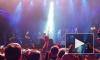 Видео со зрителями Шевчука, вставшими на колени в память о катастрофе А321, попало в Сеть