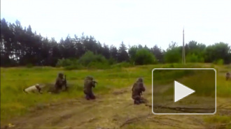 Последние новости Украины: в Славянске начались массовые аресты, ополченцы сбили самолет на границе с Россией