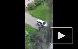 Видео: на Будапештской группа качков жестоко избила и засунула в машину петербуржца
