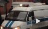 Житель Архангельской области заявил в полицию о краже у него конопли и получил 200 часов исправительных работ