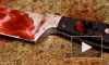 Петербурженка ударила мать ножом около сотни раз ради наследства