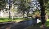 Сквер у ТЮЗа в Петербурге открыли раньше срока