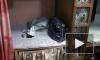 Хозяин наркопритона в Купчино жестоко поплатился за свой бизнес