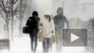 МЧС: В Петербурге ожидается шторм, мороз и гололед
