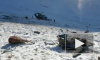 Алтайские чиновники избежали ответственности за браконьерство