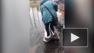 Опубликовано видео с подтопления после дождей в Тосно
