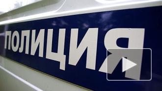 В Петербурге задержаны автомобильные бомжи-грабители