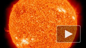 ГУ МЧС предупреждает о сильной жаре 2 и 3 августа