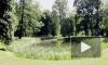 Ботанический сад в Петербурге приукрасили, но не до конца