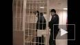В Петербурге осуждена банда, которую 11-классник сколоти...