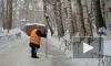НЛО похищает дворников Петербурга прямо из снегоуборочных машин