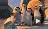 """""""Пингвины Мадагаскара"""": пернатые мастера шпионажа получили свои полтора часа славы"""