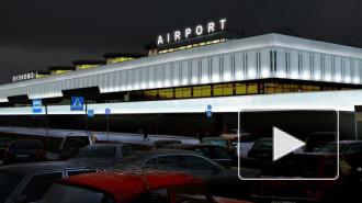 С февраля Пулково-1 перестанет принимать большинство рейсов