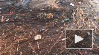 На Свердловской набережной обнаружили мусор и солому
