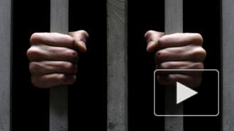Новости Новороссии: из украинского плена освободят молодую медсестру