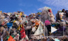 В Приморье только 8% мусора идёт на переработку