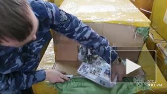 В Петербург не пустили грузовик с контрафактными игрушками Lego и Disney