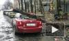 Святой Иуда валит деревья, уродует машины и рвет провода в Петербурге