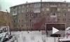 Мужчину, который выбросил из окна собачку в Красноярске, приговорили к исправительным работам