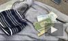 В Петербурге задержали двух профессиональных барсеточников