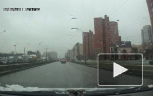 Пешеходы-смертники на переходе Коломяжского проспекта