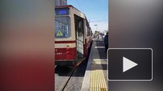 На проспект Энгельса возвращаются трамваи после дорожных работ