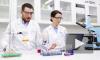 В Нидерландах приблизились к созданию вакцины от коронавируса
