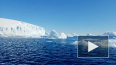 Новый остров обнаружили в Антарктиде из-за таяния ...