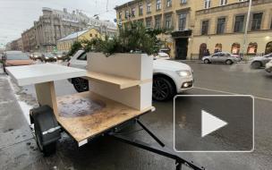 В центре Петербурга установили прицепы со скамейками и растениями