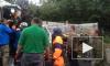 Очевидцы: На Приозерском шоссе манипулятор влетел в фуру, один человек погиб