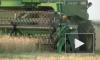 Украинский комбайнер смолотил в фарш бомжа, воровавшего кукурузу