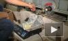 В Самарской области полиция накрыла крупный подпольный завод по производству алкоголя