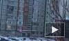 Январь в Петербурге заканчивается оттепелью и мокрым снегом