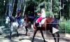 Девочка и лошадь: трагедия обнажила семейный конфликт