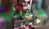 Странное видео из Китая: котят посадили в игровой автомат