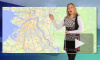 Антистресс Жириновский помогает пережить непогоду в Петербурге