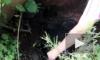 В Красногвардейском районе задыхаются от канализационных стоков в ручье Горелый