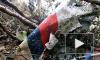 СМИ: Россия скрывает ДНК жертв катастрофы SSJ от индонезийских экспертов