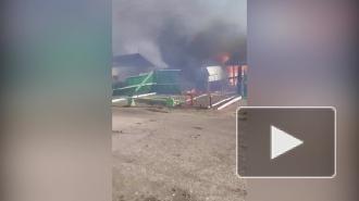 В Омской области пожар уничтожил в посёлке пять жилых домов