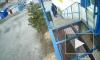 """В Петербурге неизвестные на """"BMW"""" украли мусорное ведро"""