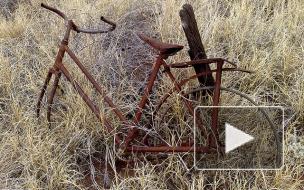 Труп на ржавом велосипеде нашли у Приморского шоссе