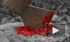 Под Хабаровском 80-летняя старушка убила топором и расчленила трех человек