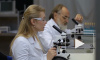 В Роспотребнадзоре рассказали об иммунитете от коронавируса
