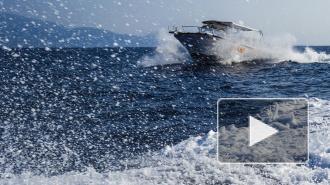 На Финском заливе ищут людей, выброшенных за борт из-за столкновения судов