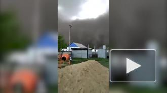 Пыльные бури накрыли Северный Казахстан