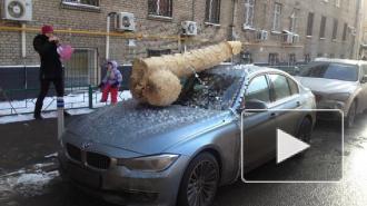 """Огромный натуралистичный пенис украсил машину """"Перзидента Роисси"""""""
