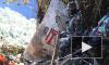 Тела россиян, погибших при крушении SSJ-100, отдадут России